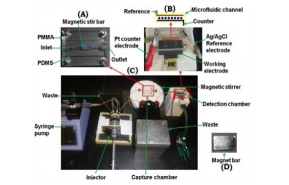 Microfluidic arrays for protein biomarker detection